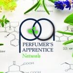 smaken van the perfumers apprentice